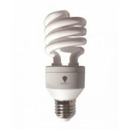 Ampoule Daylight Réf 98/75/1205